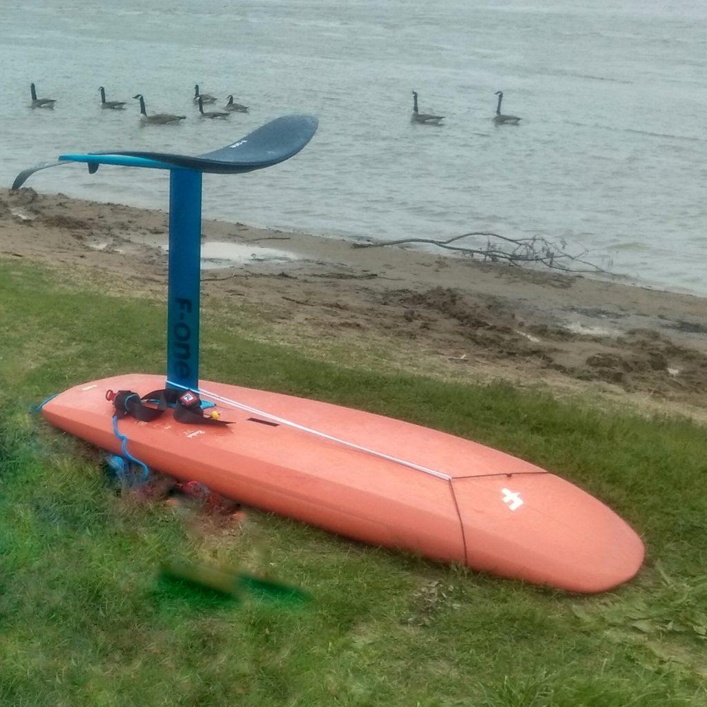 Wingfoiling auf dem Rhein